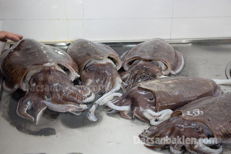 Những con mực Nang đảm bảo chất lượng để chuẩn bị chế biến chả mực Bá Kiến