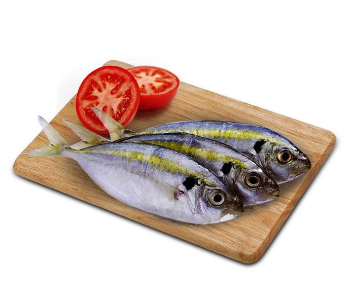 Cá chỉ vàng tươi sống, ngọt thơm, bổ dưỡng