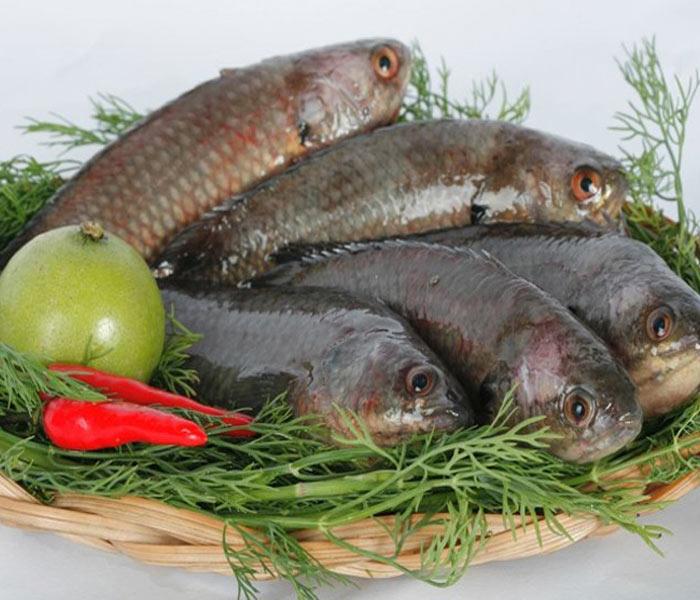 Chuẩn bị nguyên liệu làm cá rô kho tộ