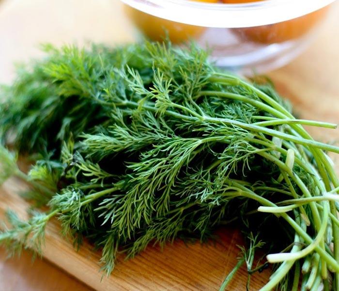 Rau thì là với hương thơm tự nhiên sẽ làm món canh thêm phần hấp dẫn