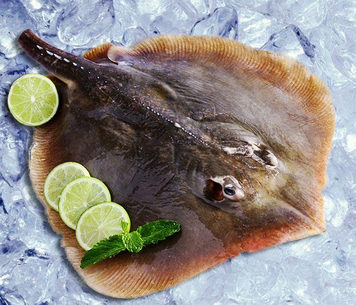 Cá đuối tươi ngon cho món cá khô chất lượng