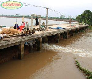 Rươi thường được nuôi ở bãi triều, ruộng lúa hoặc những nơi có nước thủy triều ra vào