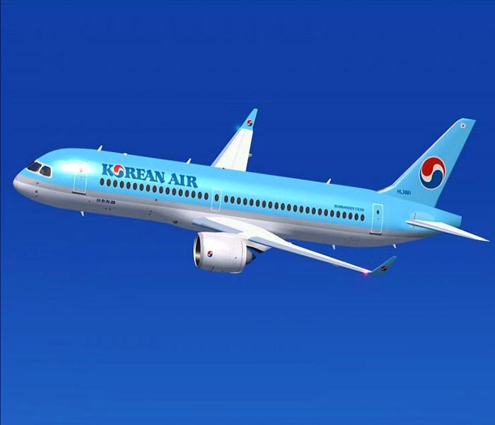 Hầu hết các hãng hàng không nước ngoài đều không cho mang mực khô lên máy bay