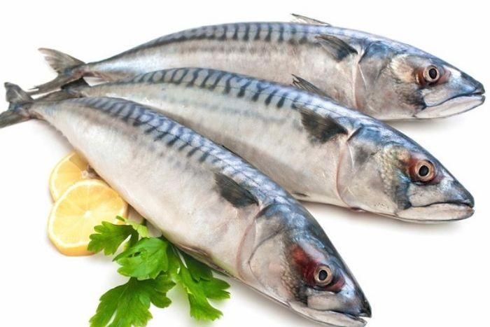 Cá nục là loại cá biển được nhiều thực khách yêu thích